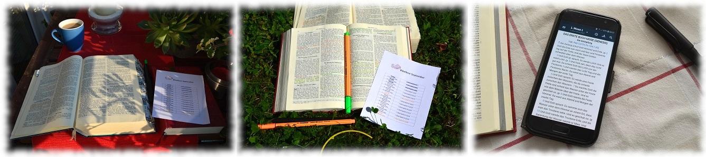 Tägliche Bibellese Herrnhuter
